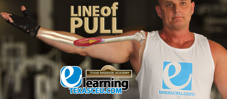 Texas CE courses start today