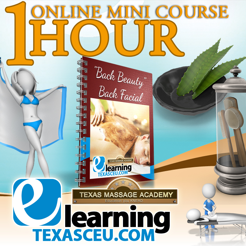 Massage therapy ce online business course